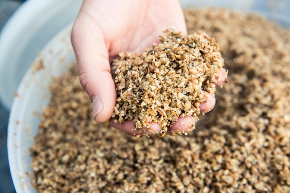 Regrained upcycles spent brewing grains into granola bars and snack puffs.