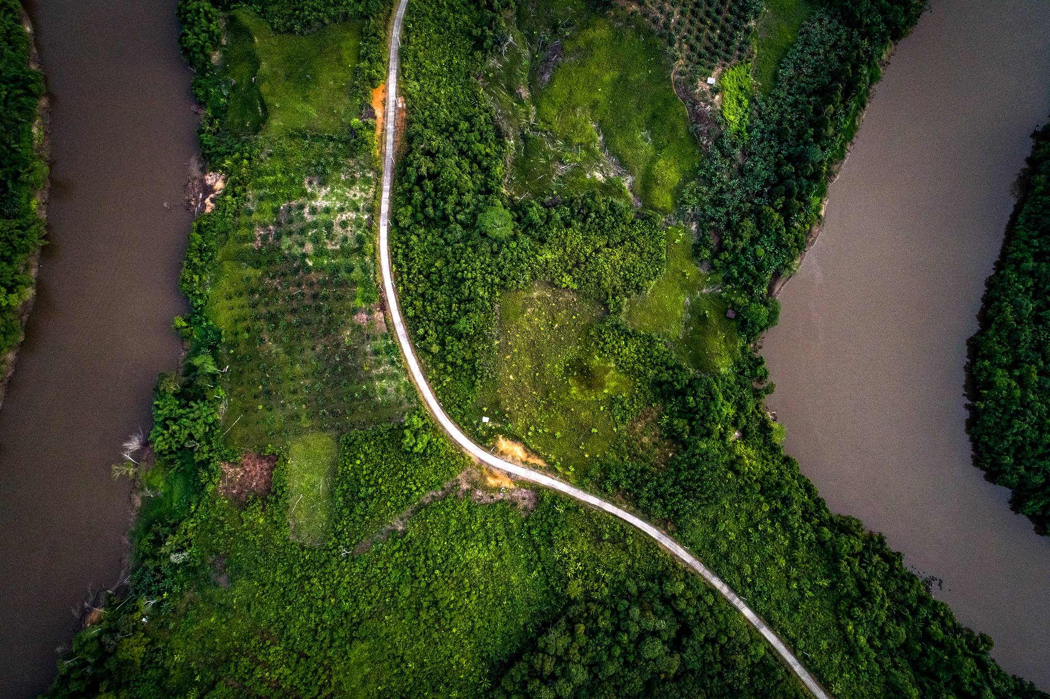 <p>Aerial view of the forest in East Kalimantan, home to a growing palm oil industry. Photo by Nanang Sujana/CIFOR.</p>