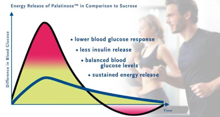 palatinose benefits