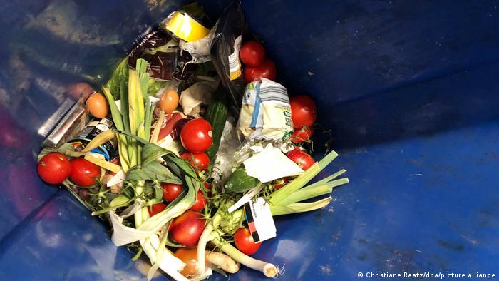 Leeks, tomatoes and other food in a trash can