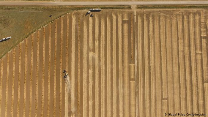 Birds eye view of a field being cultivated