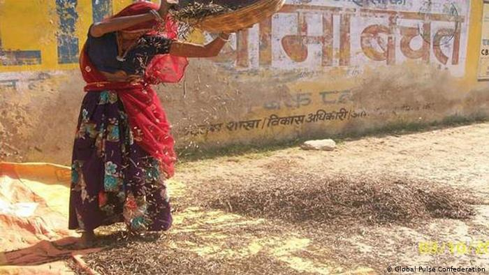 A woman spreads out pulses on the ground