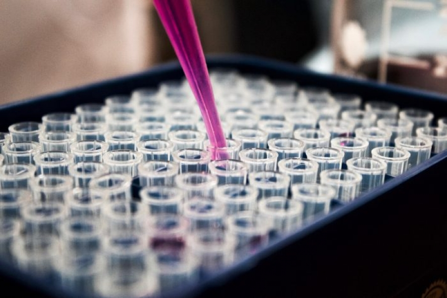 Democratizing Biotech in Emerging Economies | Thought For Food