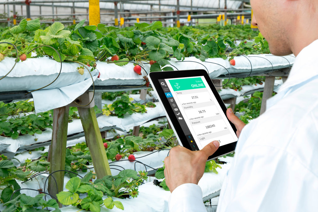 Olam CFO explains how agribusiness is going digital to beat Covid-19