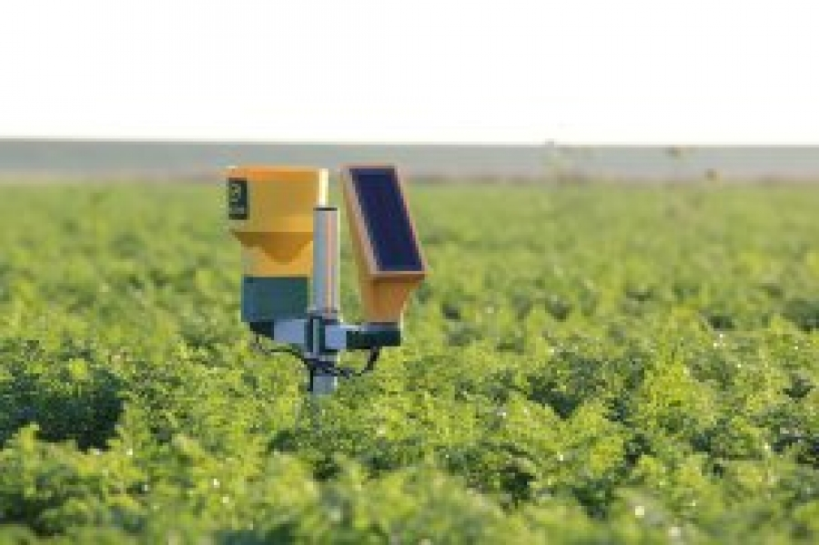 Rapid adoption of artificial intelligence in agriculture – FutureFarming